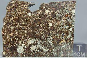 NWA-5931-LL3-Meteorite-20-3-gram-part-slice