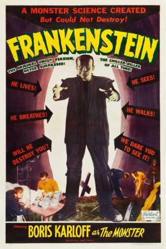 1931 FRANKENSTEIN BORIS KARLOFF VINTAGE MOVIE POSTER PRINT 24x16 STYLE B 9 MIL