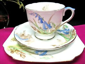 SHELLEY-TEA-CUP-AND-SAUCER-BLUEBELLS-PATTERN-TEACUP-PAINTED-TRIO-CUP