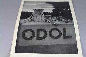 ODOL-Hupfelds-Phonola-Jugendstil-Reklame-auf-Papier-1900-S128