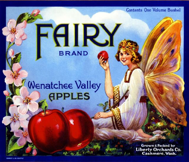 Cashmere Washington Fairy Apple Fruit Crate Box Label Art Print