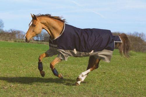 Horseware Ireland Mio Tapis Cougreenure Cheval Medium 200g 600D ImperméableAASA42