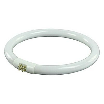REPLACEMENT 22W T5 180MM CIRCULAR FLUORESCENT TUBE FOR MAG LAMPS (INCL. OUR V21)