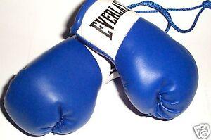 Everlast Blue Mini Boxing Gloves for Autograph Hunters