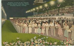 Daytona Dog Track >> Details About Daytona Fl Florida Dog Racing Greyhounds Volusia Kennel Club Linen Postcard