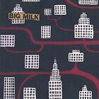 Big Milk by Big Milk (CD, Mar-2002, Big Milk)
