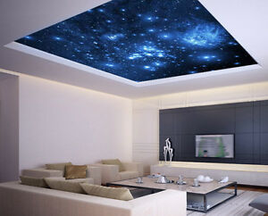 Ceiling Sticker Removable Vinyl Mural Blue Stars Space