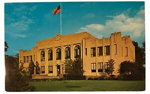 Tuscola-County-Court-House-Caro-Michigan-MI-Postcard