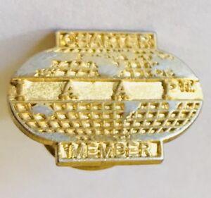 World-Globe-Map-Charter-Member-Pin-Badge-Retro-Vintage-D3