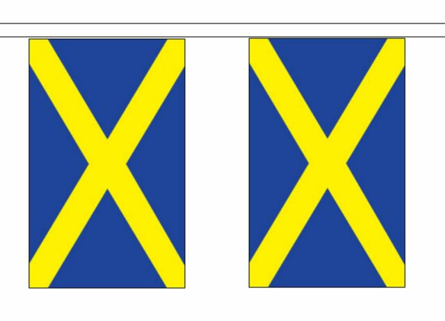 3m 6m 9m Metre Length 10 20 30 Flags Polyester Orange Plain Flag Bunting