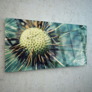 Canvas-Prints-Wall-Art-on-Fade-Proof-Glass-Photo-Dandelion-in-ANY-SIZE-40907635