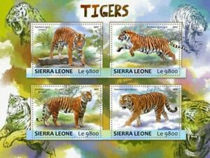 Sierra-Leone-2017-TIGRES-sur-timbres-4-Timbre-Feuille-SRL17303a