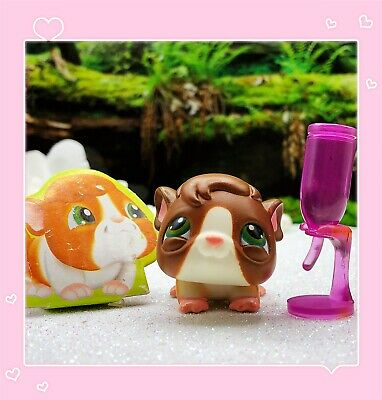 Details about  /Littlest Pet Shop~#4~First Guinea Pig~Brown White Pink~Green Dot Eyes~Red Magnet