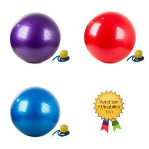 Balón Da Gimnasia Fitness Para Rehabilitación Bola Yoga Pilates 65cm + Bomba