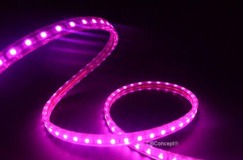 CBConcept® UL Listed,80 Feet,8500 Lumen,120V Flat LED Strip Rope Color Option