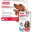 BEAPHAR-FIPROtec-SPOT-ON-CAT-DOG-FLEA-TICK-TREATMENT-Solution-S-M-L-XL-Fipronil thumbnail 15