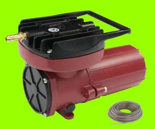 Hailea ACO 12 Volt 006d PLUS 5 M TUBO COMPRESSORE, Pompa ad aria esca pesce auto