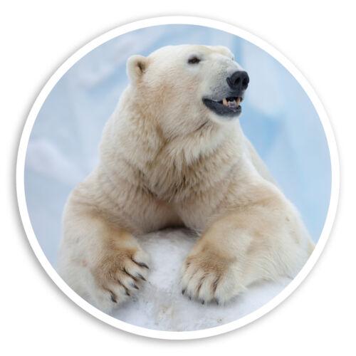 2 x 10cm Wild Polar Bear Vinyl Stickers Animal Arctic Laptop Sticker #30160