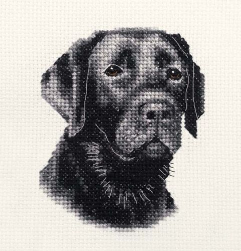 Full counted cross stitch kit BLACK LABRADOR RETRIEVER dog ~ puppy