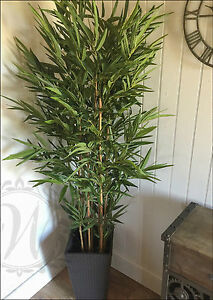 indoor outdoor potted realistic artificial 2 metres tall bamboo tree plant green ebay. Black Bedroom Furniture Sets. Home Design Ideas