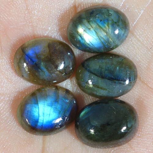 Mejor Precio 12X16 Mm Labradorita Cabujón piedra suelta forma oval 5 Piezas Lote