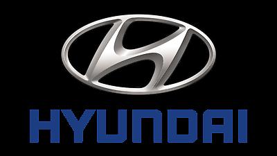 HYUNDAI OEM 07-11 Accent Exterior-Rear-Rear Door Trim Right 838301E000