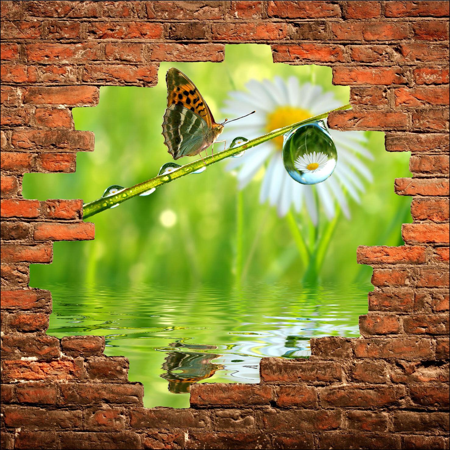 Wandsticker Schein Auge Schmetterling Ref 819