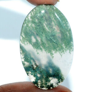 Cts-43-30-Natural-Moss-Agate-Cabochon-Oval-Cab-Loose-Gemstones