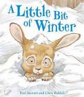 A Little Bit of Winter by Paul Stewart (Paperback, 2000)