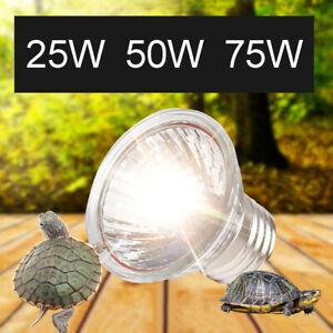 Eg-Animal-de-Compagnie-Chauffage-Lampe-Uva-Uvb-Complet-Spectrum-Reptile-Tortue
