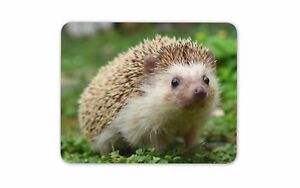 image is loading hedgehog mouse mat pad cute garden animals kids - Garden Animals