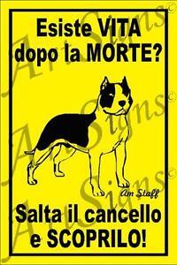 Amstaff - Cartello - ATTENTI AL CANE - American Staffordshire Terrier - Italia - Amstaff - Cartello - ATTENTI AL CANE - American Staffordshire Terrier - Italia