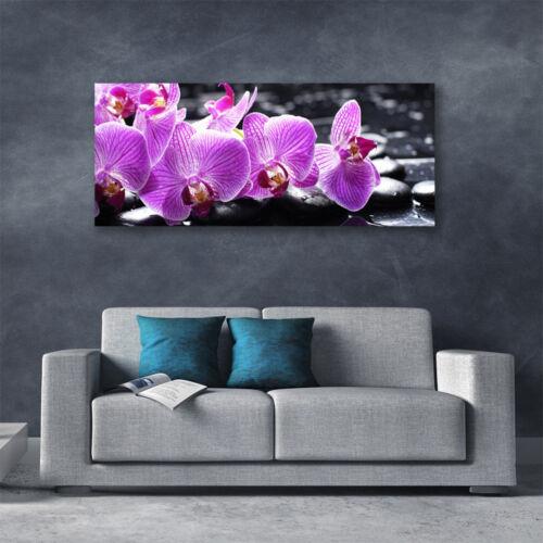 Leinwand-Bilder Wandbild Canvas Kunstdruck 125x50 Blumen Steine Pflanzen