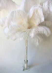 """20 Piece Set White Ostrich Feathers For Wedding Birthday Centerpiece 8""""-24"""" USA"""