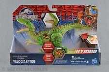 Jurassic World Dino Hybrid Velociraptor Raptor Growler Jurassic Park NEW
