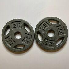 "2 x 10 lb Pair Cap Barbell 10lbs 1"" Standard Weight Plates"