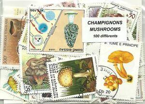 """Lot timbres thematique """"champignons"""" - France - Lot de 100 timbres thematique """"Champignons"""" Tous différents Presentation en enveloppe cristal Envoi rapide et serieux Frais de port OFFERT a partir de 4 lots achetés, demandez la dispoliste - France"""
