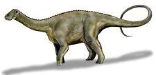 Sticker decal dinosaur dino jurassic wall children room kid decor nigersaurus