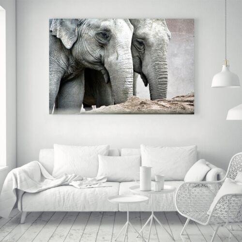 Elephant Black White Silk Canvas Poster Art Painting Wall Decor A120 Unframed