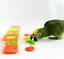 Parrot puzzle training intellectual development color separation coin box