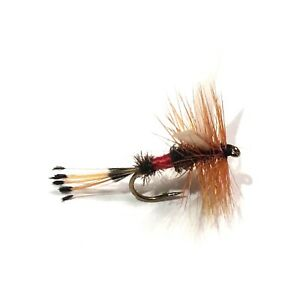 6 x Royal Stimulator Stonefly Dry Fly Fishing Flies For Trout Salmon