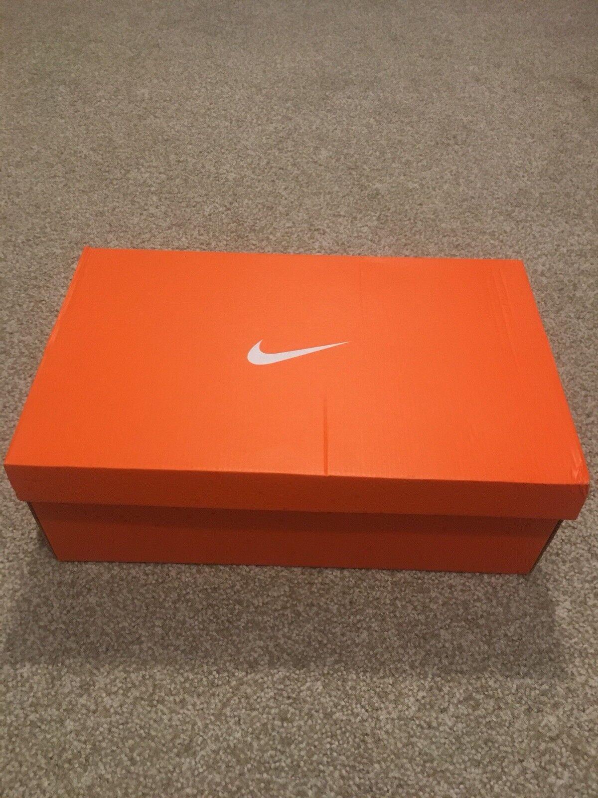 Nike Hypderdunk 2018 team blue size 10