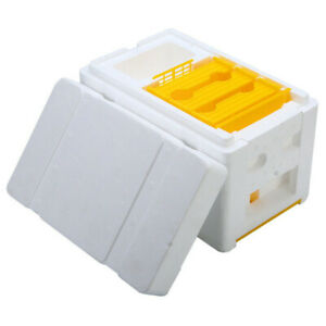 Honey Beehive Foam Frames Beekeeping Kit Bee Hive King Pollination Box NEW