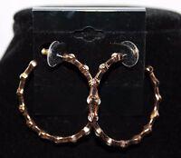 Premier Designs firefly Earrings