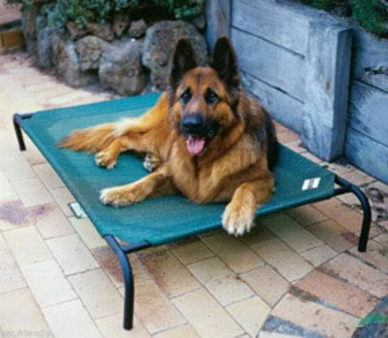 Large Coolaroo Pet Dog Bed Mesh Raised Steel Bed 51.1  x 31.6  Supports 150 lbs