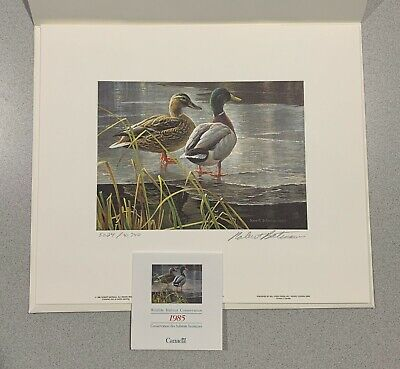 2010 Washington Duck Stamp Print By Robert Steiner Signed and Numbered
