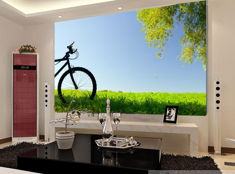 3D Grünland, fahrrad 0898 Fototapeten Wandbild Fototapete BildTapete Familie DE