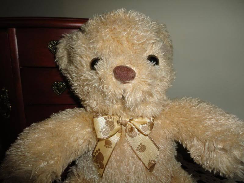 Teddy orso with orso Paw Paw Paw Ribbon 640b5d