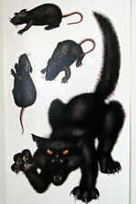 Halloween Decoration Prop Insta Theme Black Cat and Rats Peel N Place Sticker