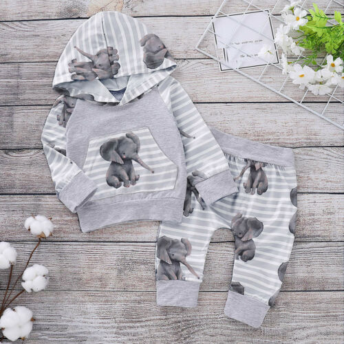 2PCS Baby Girls Boys Kids Hooded Tops Pants Clothes Outfits Sets Tracksuit 0-18M